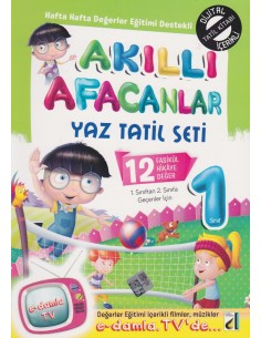 Damla Yayınları Akıllı Afacanlar 1.Sınıf Yaz Tatil Seti(2.Sınıfa Geçenlere)