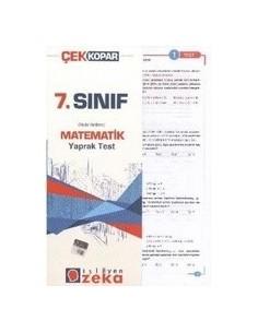İşleyen Zeka Yayınları Ortaokul 7. Sınıf Matematik Yaprak Test