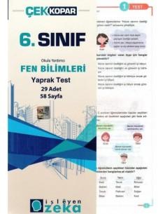 İşleyen Zeka Yayınları Ortaokul 6. Sınıf Fen Bilimleri Yaprak Test