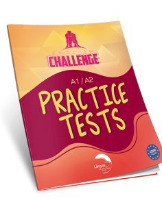 Lingus A1/A2 English Challenge Practice Test