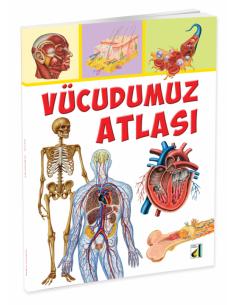 Damla Yayınları Vücudumuz Atlası