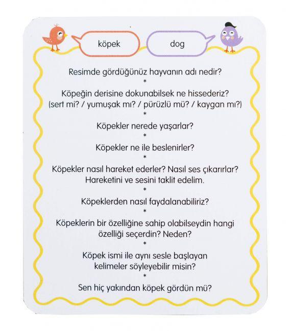 Eolo Görsel Eğitim Kartları - 10011