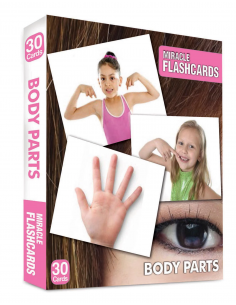 Body Parts Miracle Flashcards 30 Cards - MK Publications